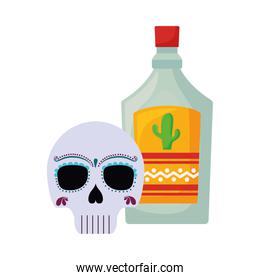 skull with bottle tequila mexican icons