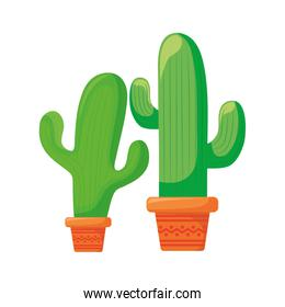 set cactus in pot plant isolated icon
