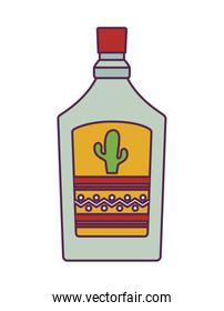 tequila bottle drink isolated icon