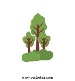 tree plants with landscape on white background