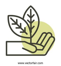 hand with plant alternative sustainable energy line style icon
