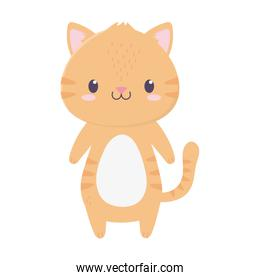 cute tiger animal cartoon isolated icon