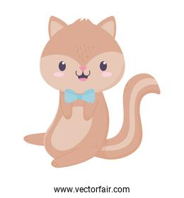 cute squirrel with bow tie animal cartoon isolated icon