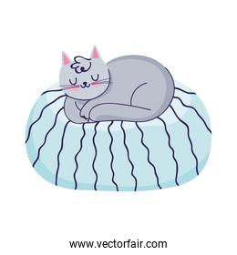 cat sleeping on cushion cartoon isolated icon