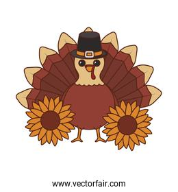 Turkey and sunflowers of thanksgiving day vector design