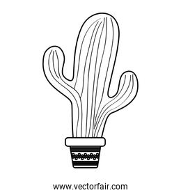 Isolated cactus plant vector design