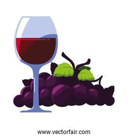 wine glass with grapes on white background