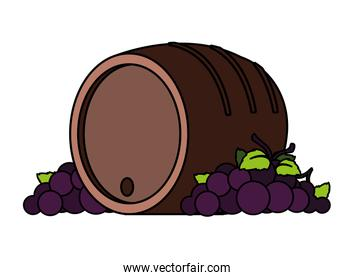 grapes branches and wine barrel on white background