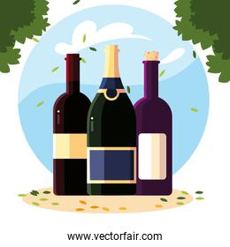 wine bottles with background landscape