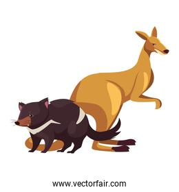 animals of australia on white background