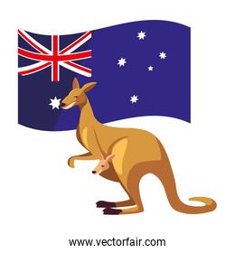 kangaroo with australian flag in the background