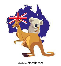 kangaroo and koala with map of australia in the background