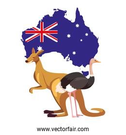kangaroo and ostrich with map of australia in the background