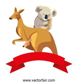 kangaroo and koala on white background