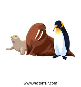 arctic animals in a white background