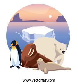 arctic animals in landscape with blue sky and iceberg
