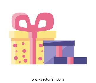 gift boxes with decorative ribbon on white background