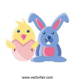 chick and rabbit on white background