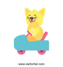 cat with car toy  baby toys
