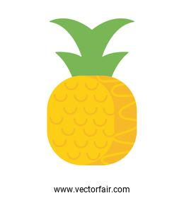 fresh and delicious pineapple on white background