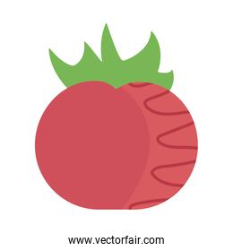 fresh and healthy vegetable, tomato on white background