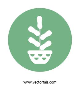 houseplant with potted, block and flat style icon