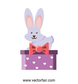 cute bunny in a christmas gift box on white background