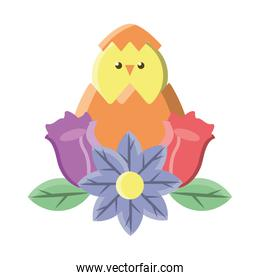 chick in easter egg with flowers on white background