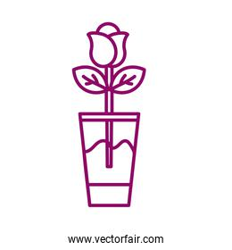 rose in glass vase, line style icon