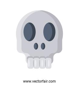 skull head on white background