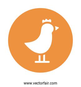 cute chicken , block and flat style icon