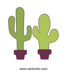 Isolated cactus plants vector design
