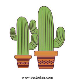 Isolated cactus plants vector illustration