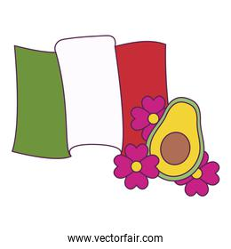 Isolated mexican map and avocado vector design