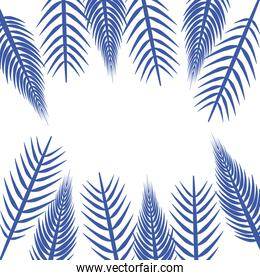 Isolated blue leaves vector design