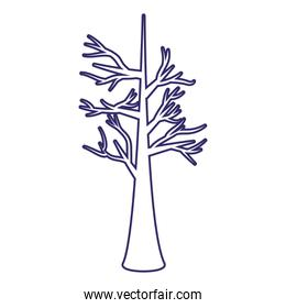 Tree of winter season vector design