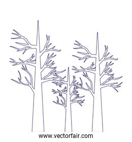 Trees of winter season vector design