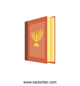 Isolated jewish torah vector design