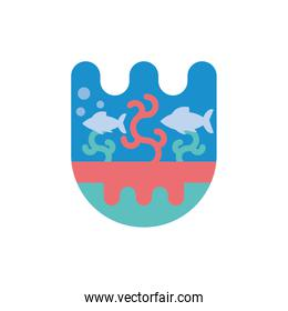 Isolated fishes animals and coral vector design