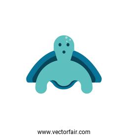 Isolated turtle animal vector design