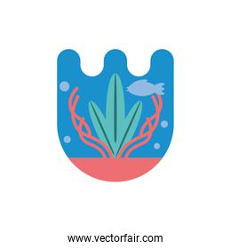 Isolated coral and plant vector design