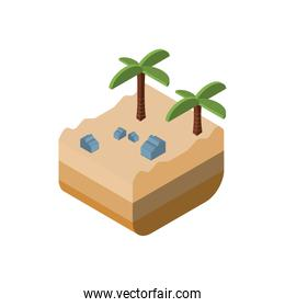 Isolated isometric palm tree and stones vector design