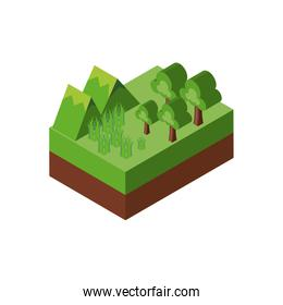 Isolated isometric mountain grass and trees vector design