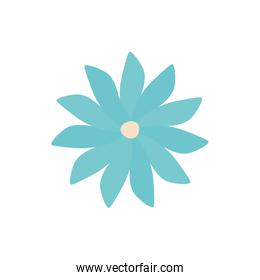 Isolated blue flower flat style icon vector design