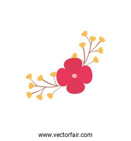 Isolated red and yellow flower flat style icon vector design