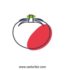 Isolated tomato vegetable line color style icon vector design