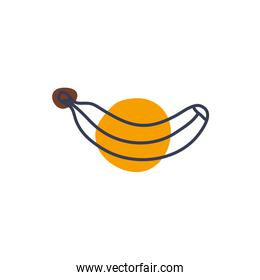 Isolated banana fruit line color style icon vector design