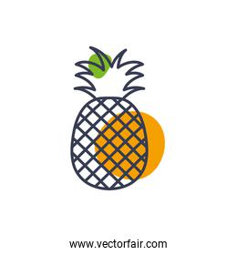 Isolated pineapple fruit line color style icon vector design