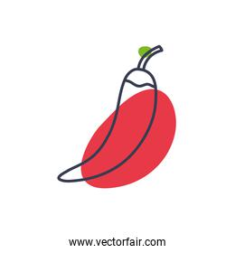 Isolated chilli vegetable line color style icon vector design