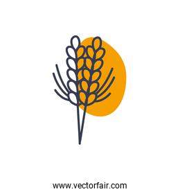 Isolated wheat ear line color style icon vector design